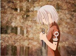 Картинки аниме sakura 7