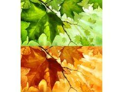 Из лета в осень фотошоп