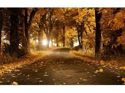 Природа картинки красивые 1024 600