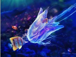 Подводный мир 3-d 7