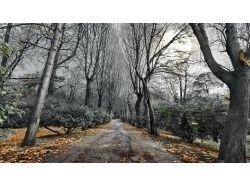 Холодная осень картинки 7
