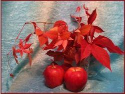 Рисунки щедрая осень 7