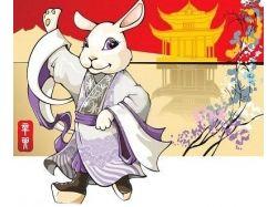 2011 китайский новый год