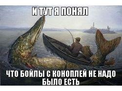Прикольные картинки о рыбалке