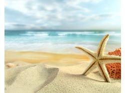Картинки лето море