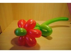 Фото цветы из воздушных шаров 1