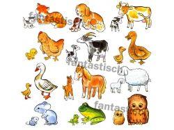 Скачать картинки животные для малышей pdf
