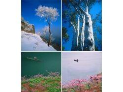 Широкоформатные фотообои для печати