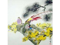 Фото цветы и птицы