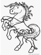 Конь раскраска
