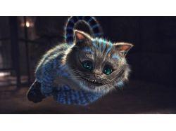 Красивые картинки чеширского кота вконтакте
