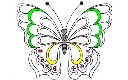 как рисуют бабочки разукрашивает материала детского