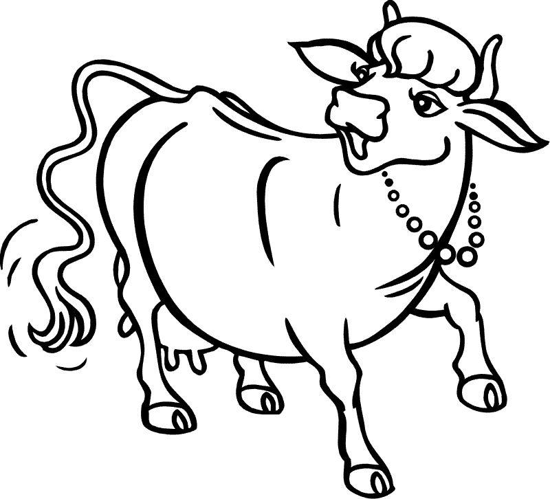 Картинки коровы раскраски
