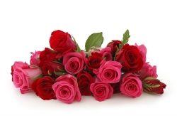 Красно розовый букет