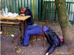 Приколы с пьяными