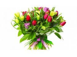 Букет тюльпанов картинки