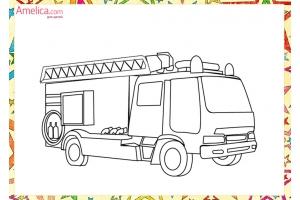 Картинка раскраска ежик для детей