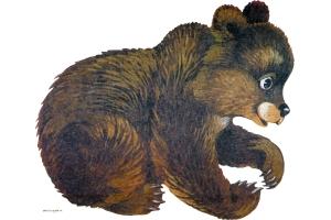 Медведь фото картинки для детей
