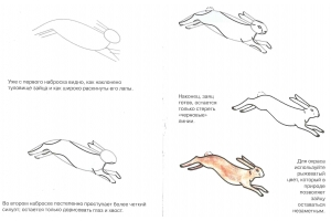 Зайчик картинки для детей нарисованные