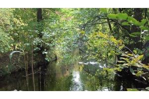 Река осень фото