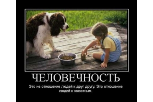 Демотиваторы по русски со смыслом