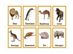 Мистика фэнтези картинки насекомые животные