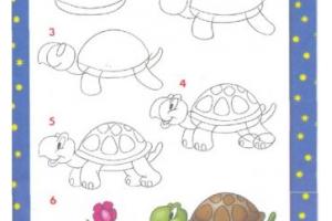 Разные рисунки рисовать