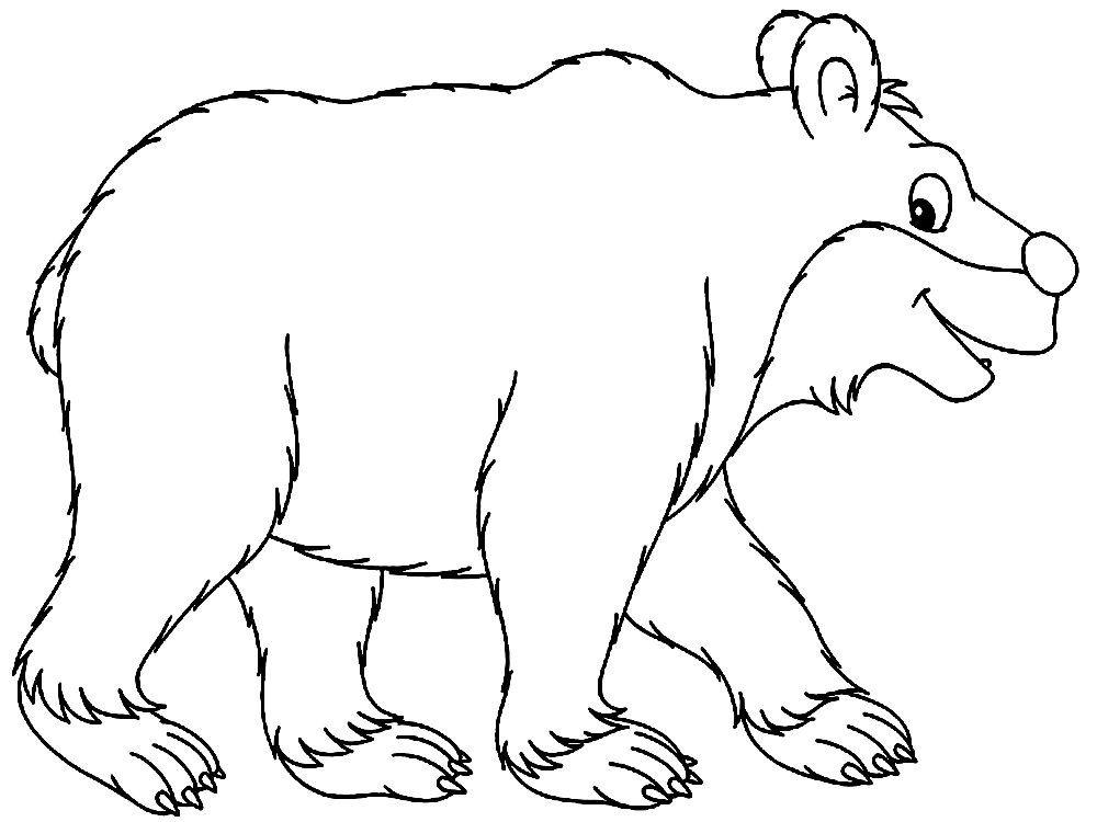 Картинки и иллюстрации с изображением жилища животных строению планировке