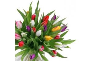 Цветы картинки на 8 марта
