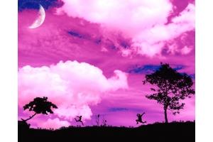 Фото картинки красивые скачать бесплатно