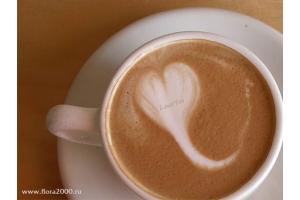 Красивые картинки посвященные дню всех влюбленных