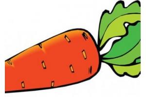 Фото морковки прикольные