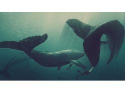 Нарисованный рисунок подводный мир