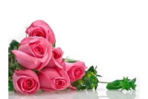 Розы ,ertn картинки красивые