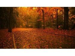 Время года осень фото