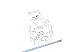 Картинки грустные кошки для детей