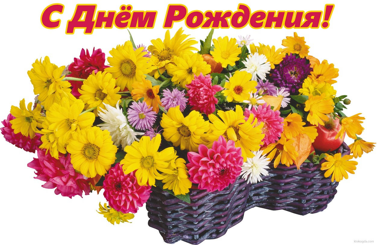 открытка с днем рождения хризантемы для наушников есть