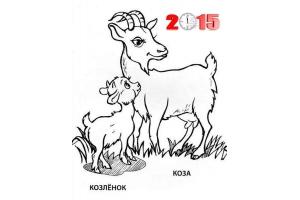 Раскраски картинки животных с детенышами для детей онлайн
