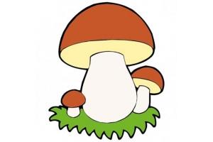 Картинка гриб боровик для детей