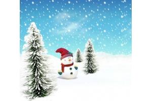 Зима картинки новый год