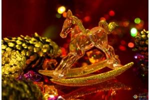 Новогодние фотографии лошади