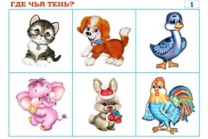 Цветные картинки животные для детей