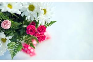 Красивые картинки поздравления