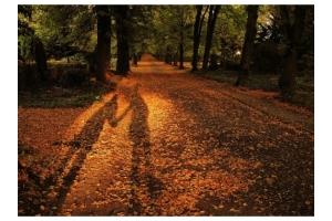 Осенняя любовь картинки