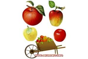 Красивые яблоки картинки клипарт для детей