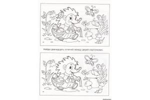 Найди отличия на двух картинках ответы для детей
