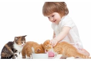 Фотографии дети и животные