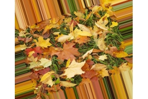 Осень картинки на раб стол