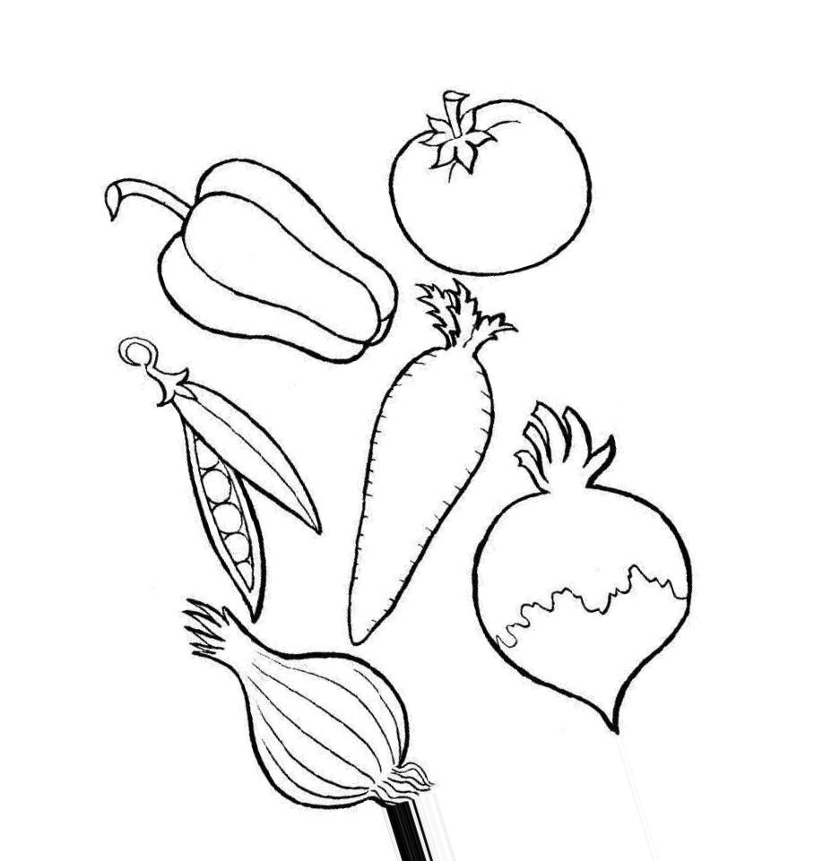 Картинки овощей раскраски маленькие