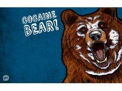 Гашиш кокаин прикольные картинки